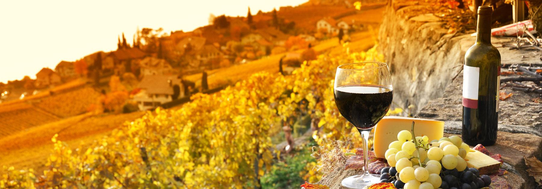 Food and Wine Vacations