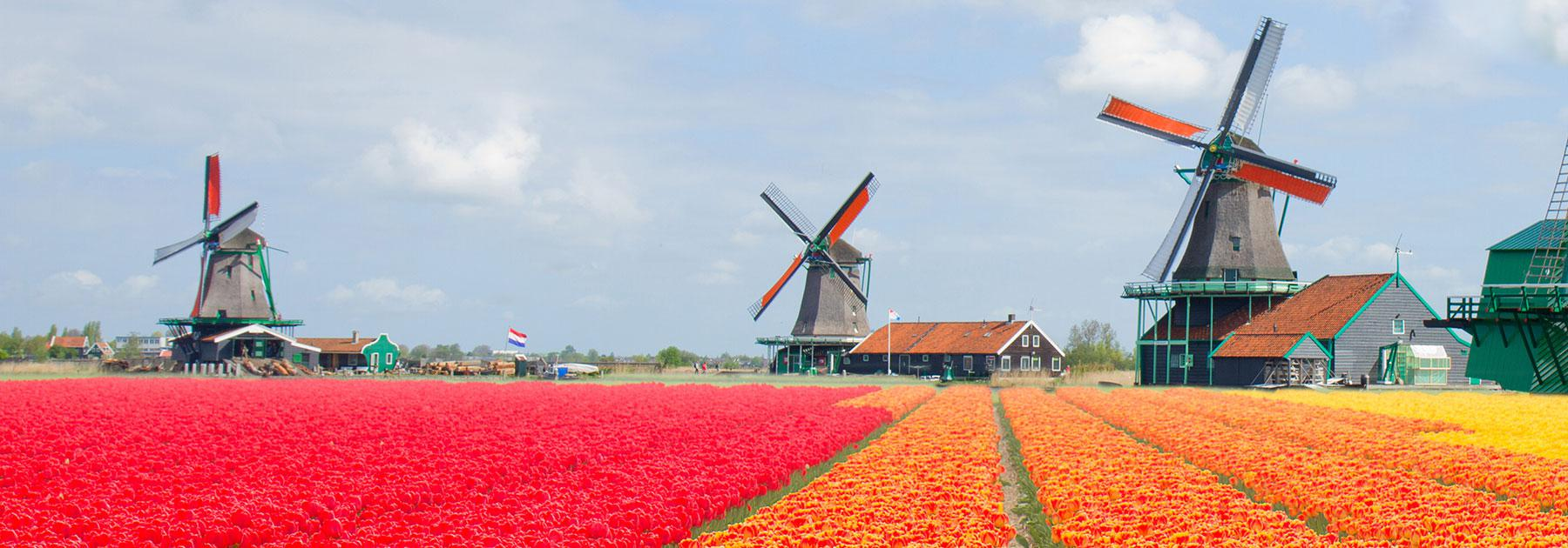Netherlands Vacations with Airfare | Trip to Netherlands from go-today